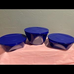 Tupperware Royal blue containers